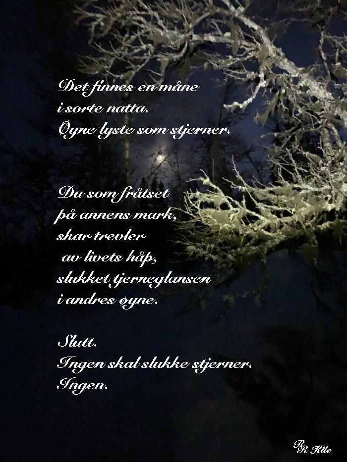 Ord og lyrikk, dikt, vers, poesi, versemål, verselinjer, poem, ordlek, med havsang i kroppen, skal vi danse på regnbuen sammen.En verden av smak i tidløs fylde. å bygge kjærlighet, ingen skal slukke stjerner, Forfatter R.R. Kile.