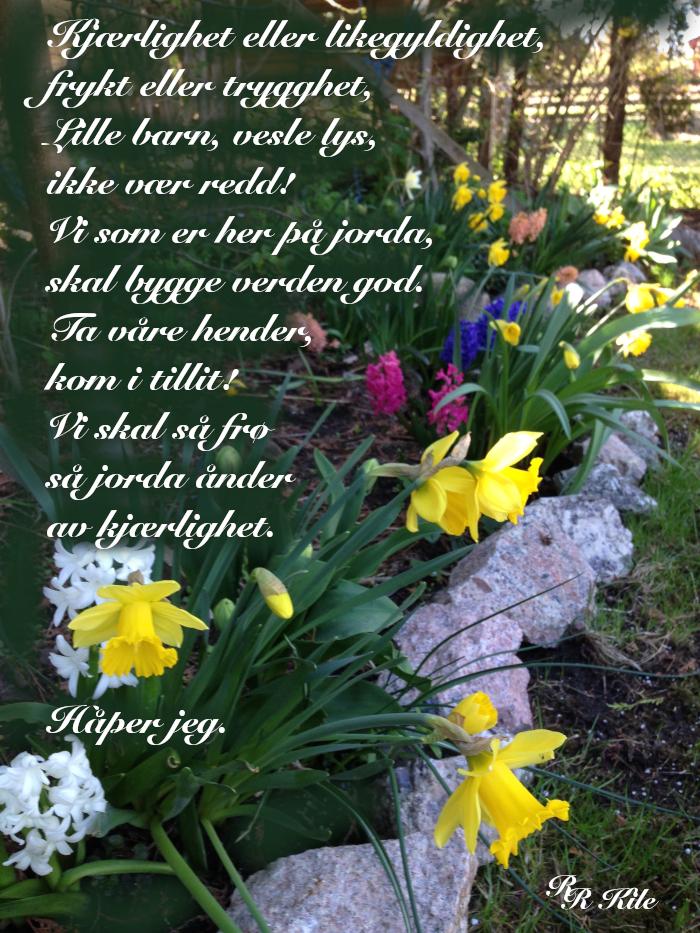 Dikt, poesi, lyrikk, poem, versemål, ordlek, å føle ei hengebjørk, sparke ball med livet, Lytt til hjertet, det sårbare, alltid, vi skal bygge verden god,  forfatter R.R. Kile
