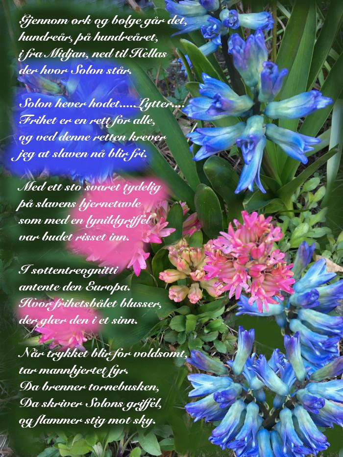 Vers av Ingeborg Refling Hagen, Hvor begynner frihetskravet, Samtalekunst. Forfatter R.R. Kile.