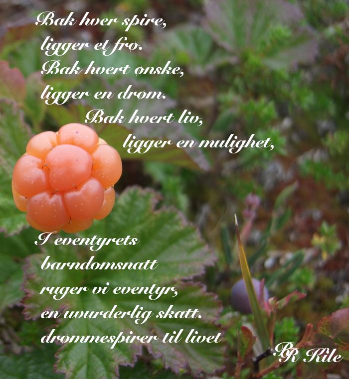 Dikt, poesi, lyrikk, ordlek, å danse vannperler sammen,  barndomsnatt, Forfatter R.R. Kile,