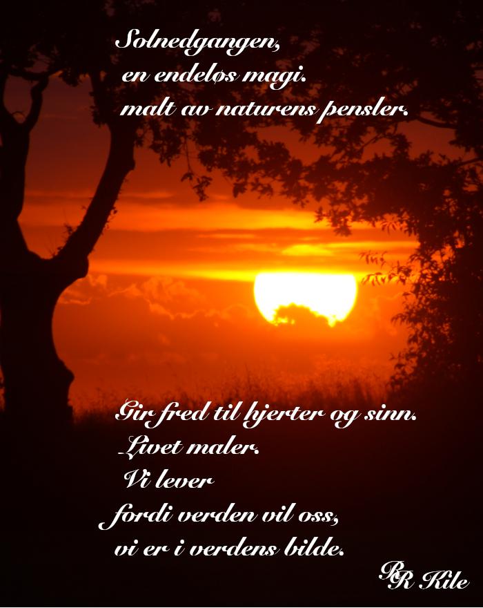 Dikt, poesi, lyrikk, ordlek, å danse vannperler sammen, Urds brønn,  barndomsnatt, i pels og hud, naturens pensler, Forfatter R.R. Kile,
