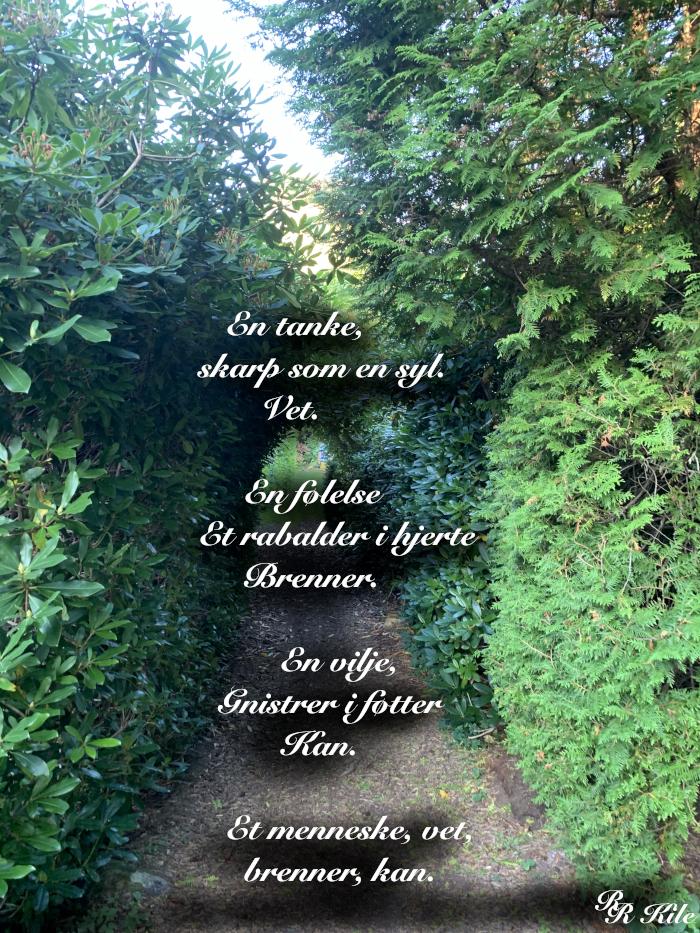 Vers om jeget, tanke, følelse, vilje. Forfatter R.R. Kile. Fantasy.