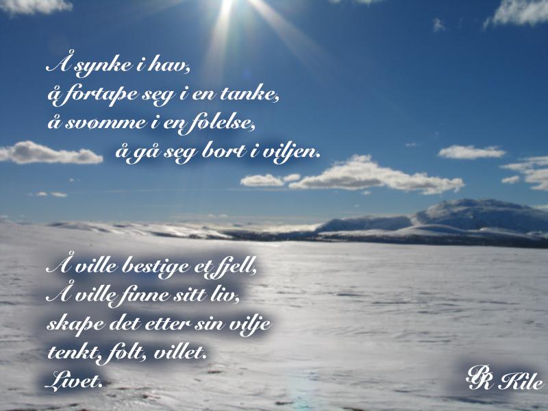 Vers om litteratur. Forfatter R.R. Kile, Norsk-Fantasy-Litteratur, Serien Liber Mundi,  Vi sank i hav,  Lytt til boka, første kapittel,  Science Fiction,