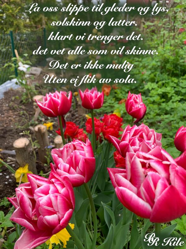 lyrikk, ser på gamle blomstervanger, to mennesker med en regnbue mellom seg, å danse vannperler sammen, tenk for en vrimmel av døde som hviler gjennom årtuseners gang, de spor som aldri ble tråkket, poesi, forfatter R.R. Kile.
